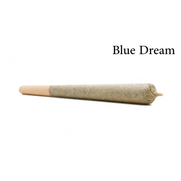 Blue Dream Pre Rolled Cone