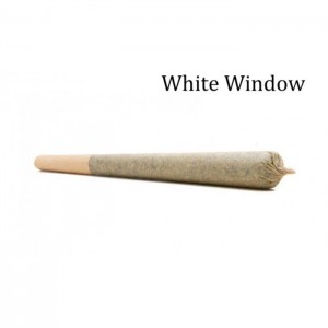 White Widow Pre Rolled Cone