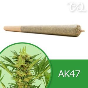 AK Pre-Rolled Cone