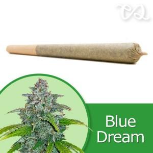 Blue Dream Pre-Rolled Cone