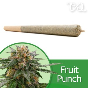 Fruit Punch Pre-Rolled Cone
